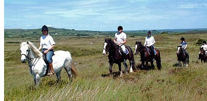 Moycullen Riding Centre, in the magnificent surroudings of the Connemara countryside